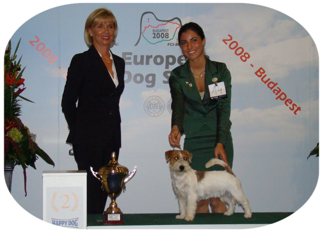-	Second Place at the European Junior Handling Final – Budapest H under Mrs. Dorotha Witwoska (PL)